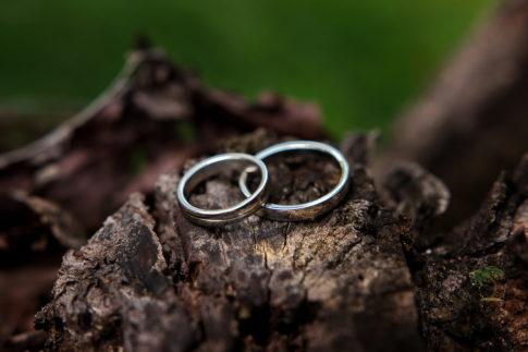 Wedding rings on tree